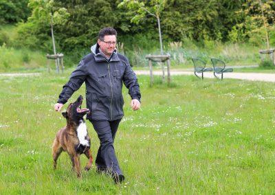 Ik ben Johan Delie en hondengedragscoach.