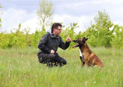 Elk probleemgedrag van een hond heeft een oorzaak, die we vinden via de contactmethode.