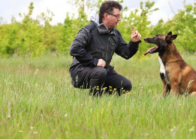 Delie Dog Training helpt je je hond beter te begrijpen.