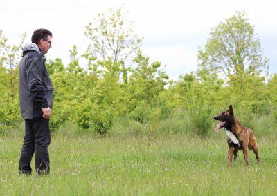 De contactmethode is een manier om tot de oorzaak van probleemgedrag bij honden te komen.